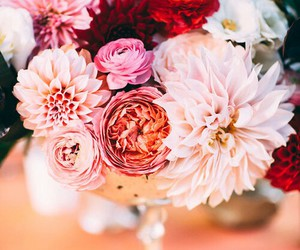 beautiful, colors, and flowers image