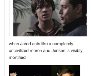 winchester, brothers, and dean image