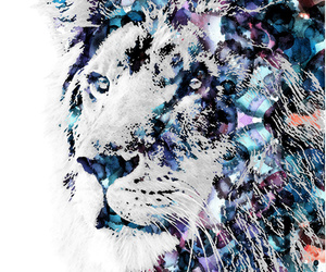 art, lion, and love image