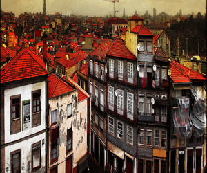 photography, colorphotoaward, and ilustrarportugal image