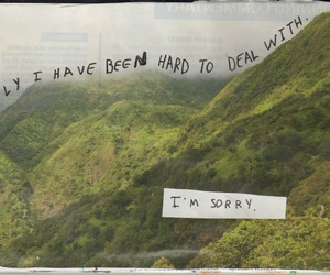 quotes, sad, and sorry image