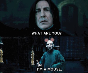 voldemort, mouse, and snape image