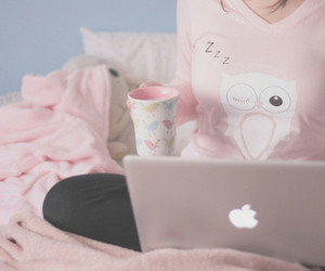 pink, apple, and owl image