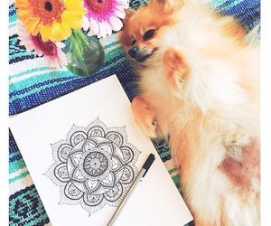 drawing, mandala, and puppy image