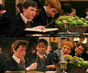 harry potter, seamus finnigan, and weasley image