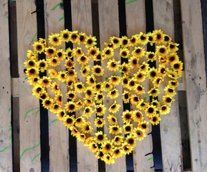 flowers, heart, and yellow image