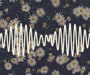 flowers, arctic monkeys, and music image