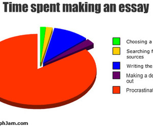essay, funny, and true image
