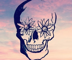 skull, sky, and flowers image