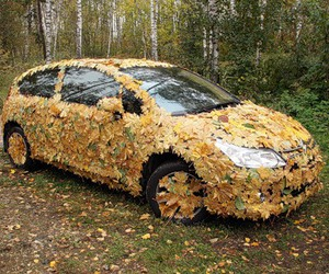 autumn, car, and leaves image