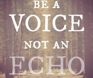 quote, voice, and echo image