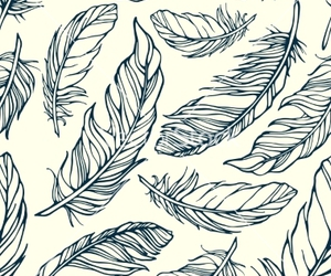 feather, pattern, and background image