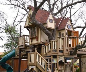 tree house and treehouse image