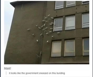 funny, goverment, and life image