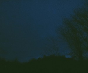 Darkness, photography, and trees image