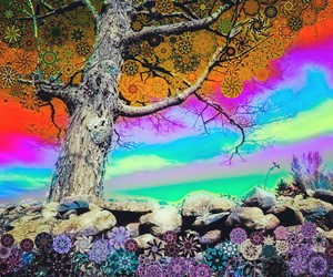 colors, tree, and larrycarlson image