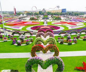 garden, flowers, and heart image