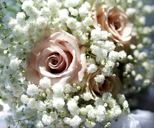 wedding bouquet image