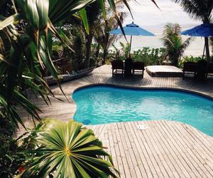 beautiful, palms, and pool image