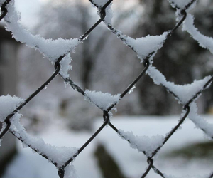 blogger, love, and snow image