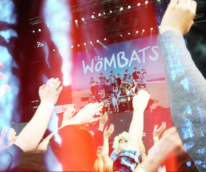 the wombats and concert image