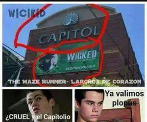 capitol, wicked is good, and the maze runner image