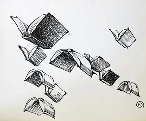 book, fly, and drawing image