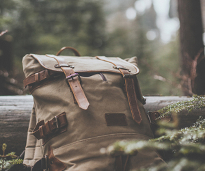 bag, nature, and forest image