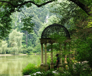 garden, green, and lake image