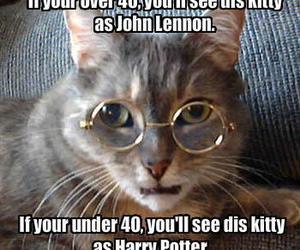 harry potter, cat, and john lennon image