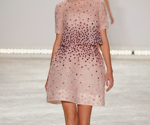 fashion, Monique Lhuillier, and runway image