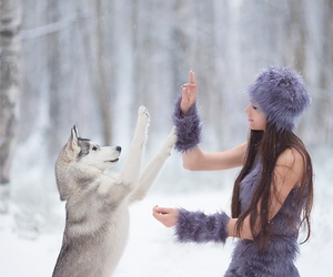 dog, nature, and winter image