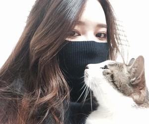 ulzzang, asian, and cat image