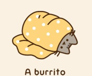 burrito, pusheen, and cat image