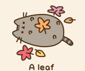 pusheen and cute image