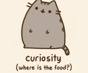 pusheen, cat, and curiosity image