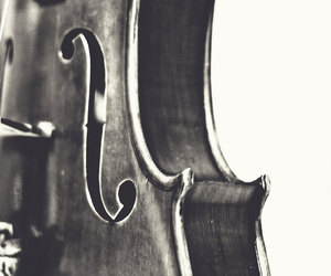 black and white, fine art, and instrument image