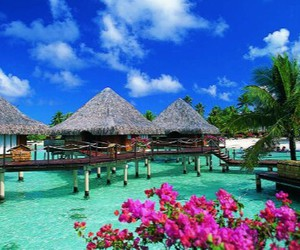 bora bora, travel, and ❤ image