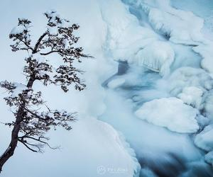 explore, frozen, and mountains image