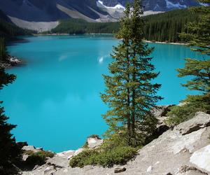 canada, lake, and nature image