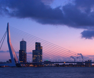 bridge, rotterdam, and city image