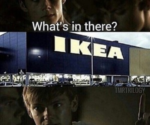 ikea, the maze runner, and newt image