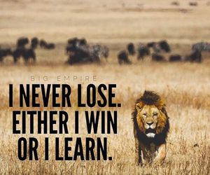 learn, win, and quote image