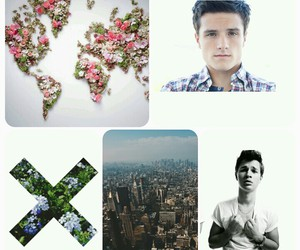 flowers, nyc, and world image
