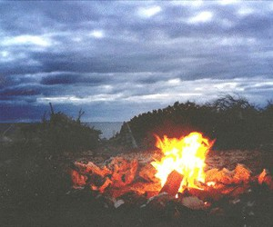 fire, nature, and gif image