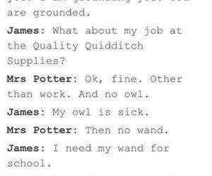 harry potter, james, and scott image