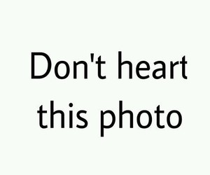heart, photo, and funny image