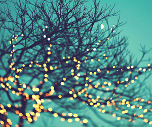 aqua, bokeh, and holiday image