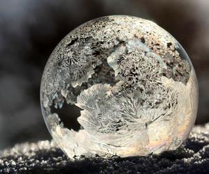bubble and frozen image