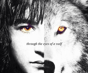 game of thrones, wolf, and bran stark image